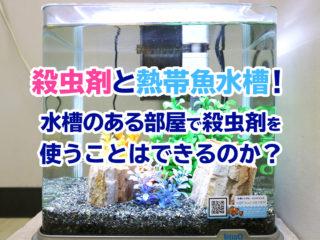 殺虫剤と熱帯魚水槽!水槽のある部屋で殺虫剤を使うことはできるのか?