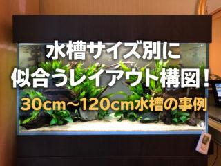 水槽サイズ別に似合うレイアウト構図!30cmから120cm水槽の事例