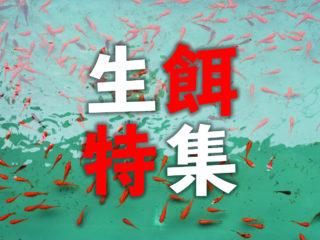 生餌特集!小赤からコオロギまで、熱帯魚・観賞魚に与える餌用生体を解説