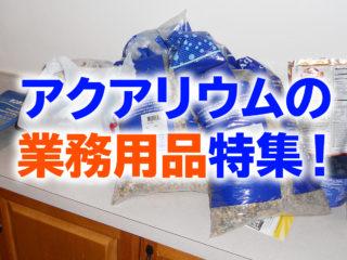 アクアリウムの業務用品特集!餌やウールマットで水槽維持コストを抑えよう
