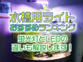 水槽用ライトおすすめランキング15!蛍光灯とLEDの違いも解説します!