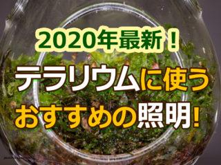 2020年最新!テラリウムに使うおすすめの照明!最新や人気の照明を特集