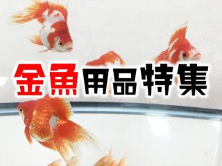 2020年版!プロおすすめの金魚用品特集ベスト15!ろ過・餌・調整剤!
