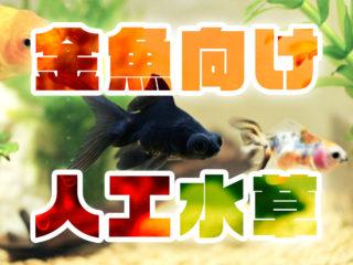 金魚用おすすめ人工水草5選!金魚に食べられない!長く楽しめるお手入れ法