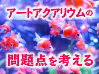 SNSで炎上!?アートアクアリウム問題を4つの観点で考える!金魚が病気になる要因とは
