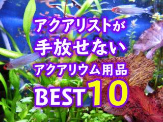 【水槽管理のプロ必需品】これだけは手放せないアクアリウム用品ベスト10