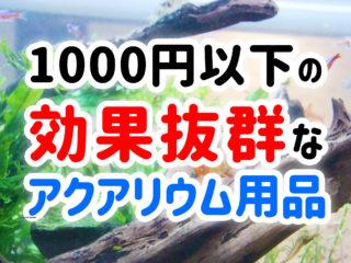 1000円以下で買える!お得で効果抜群のアクアリウム用品を10個ご紹介