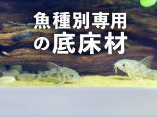 専用の底床材特集!メダカ、金魚、コリドラス、エビなど生体別の底床材!