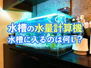 水槽サイズから水量を計算しよう!水量計算機と必要な水量をご紹介します!